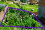 Land For Sale At Omnagar Colony, Bhangal