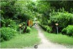 Resort On Sale In Thakurdwara, Bardiya National Park
