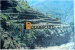 Commercial Cum Residential Land on Sale at Naubise, Dhading