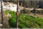Residential Land On Sale At Chunikhel,Budhanilkantha(Price Negotiable)