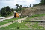 Plotted Land on Sale at Jitpurphedi(Price Negotiable)