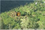 Commercial Land On Sale  At Dhulikhel @11,00,000 Per Ropani